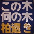 Gaflakashiwanoki